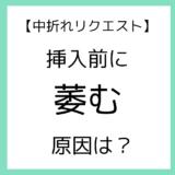 【リクエスト】挿入前に萎む原因は?